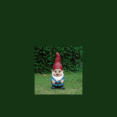 Gnome Placement